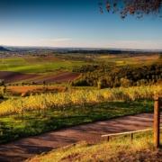4 Gründe, warum sich ein Stuttgart Besuch lohnt