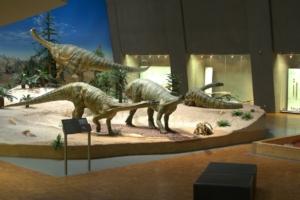 Evolution entdecken im Naturkunde Museum Stuttgart